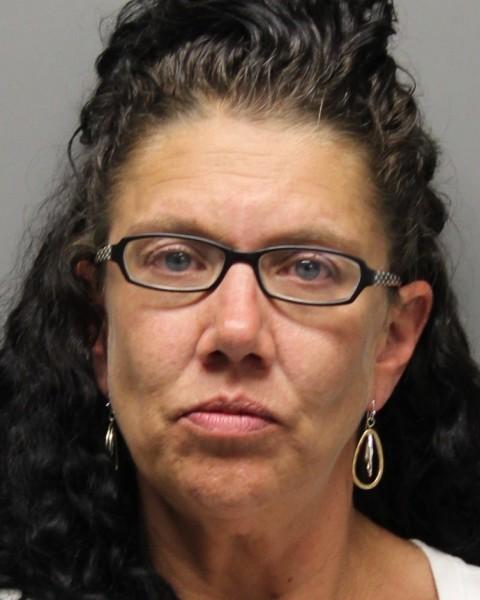 milford women The johnson city police department (jcpd) announced thursday morning that a new milford, pennsylvania, woman faces four felonies for driving while intoxicated (dwi) near wilson hospital.